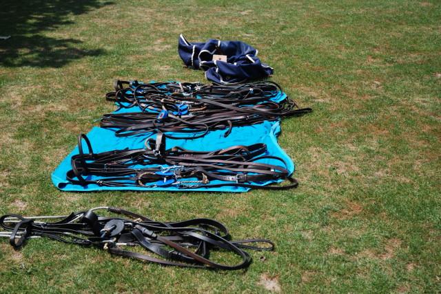 Das Equipment am Rande des Spielfeldes. Polo Park Zürich. Foto: Elisabeth Giovanoli