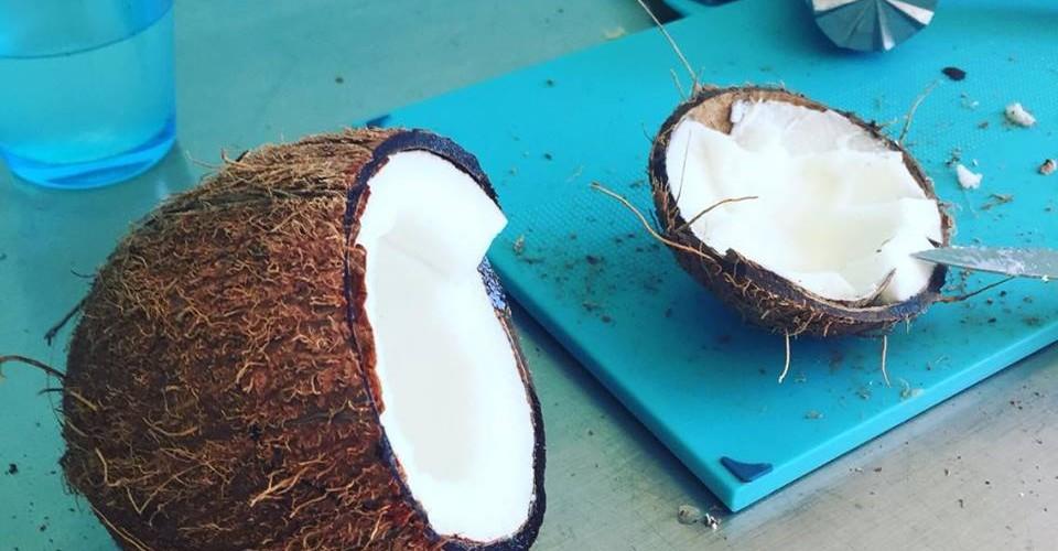 Natürliche Inhaltsstoffe - Noix de Coco - Kokosnuss milch Yves Rocher
