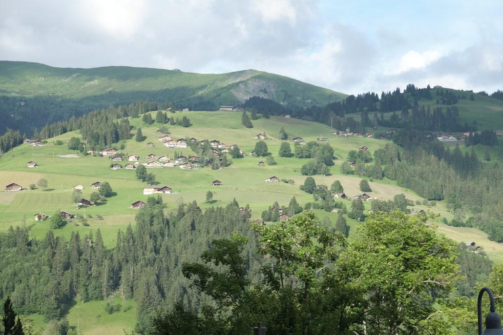 Schon die Anfahrt ist Erholung pur. Eine wunderbare Landschaft begleitet Euch bis zum Lenkerhof. Foto: Elisabeth Giovanoli