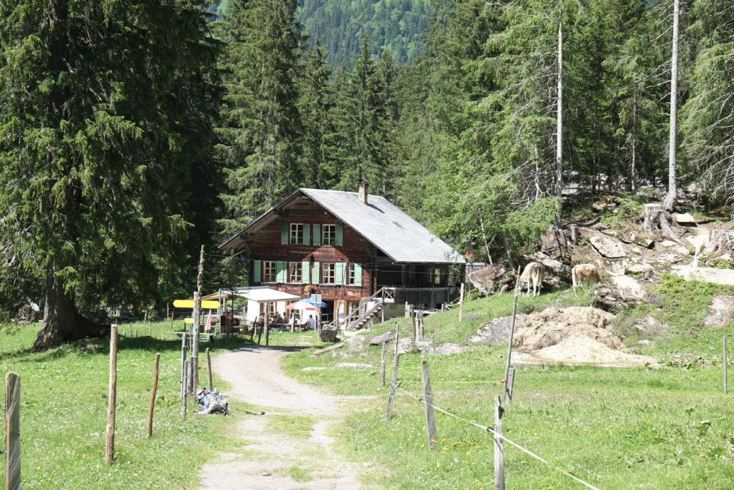 Auf dem Weg zu den Lenkerfällen. Eine typische Alp. #NoFilter Foto: Elisabeth Giovanoli