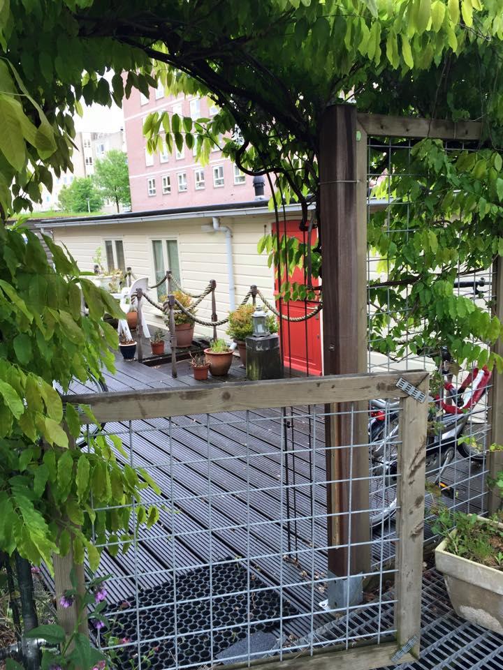 Airbnb Amsterdam - natürlich ein Hausboot. Grosszügig innen, aussen - naja so ein wenig Dreck und die tote Taube kann man ja übersehen.