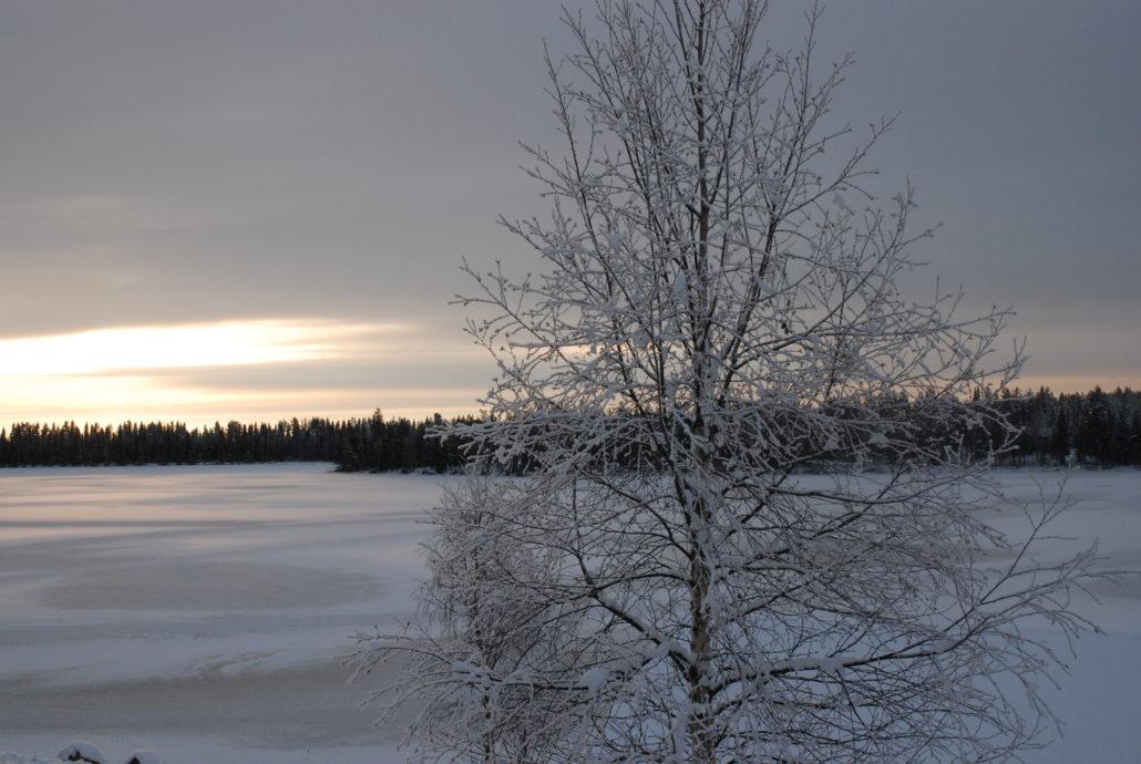 Natur so weit das Auge reicht. Finnland / Lappland
