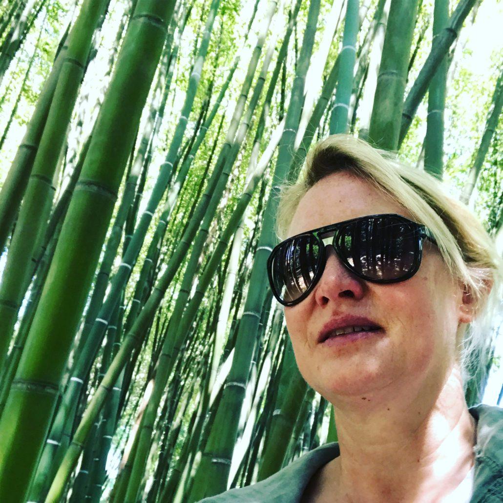Bambus Wald im Botanischen Garten Pisa