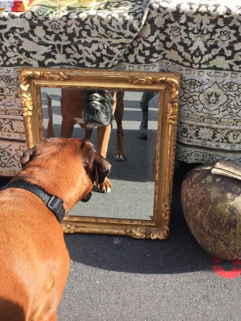 Es geht auch darum, sich in den Spiegel schauen zu können. Foto: Elisabeth Giovanoli